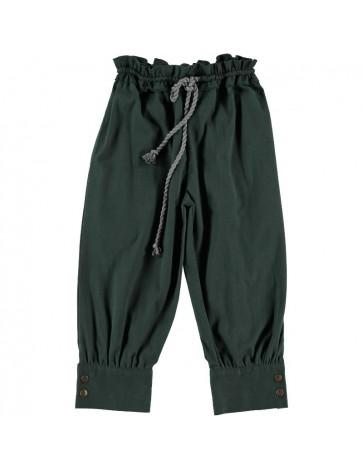 P01-Pantalon PINTOR Abeto